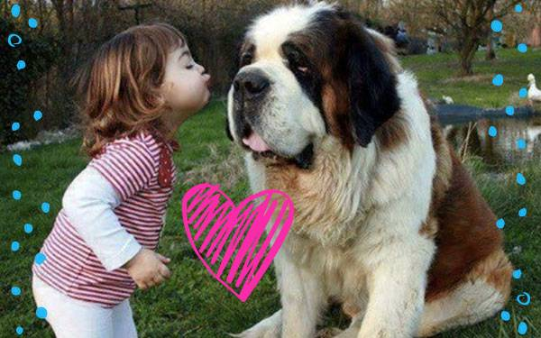 9 Dogs Who Would Make Excellent Babysitters