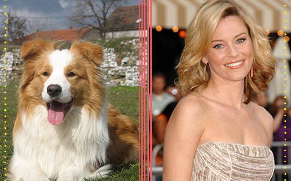 9 Celebs and Their Ideal Canine Counterparts