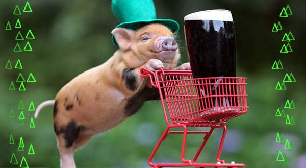 Erin Go Bark! 11 Pets That are Ready for St. Patrick's Day