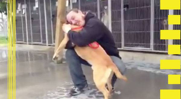 Watch This Man Reunite With His Pup After Serving Jail Time!