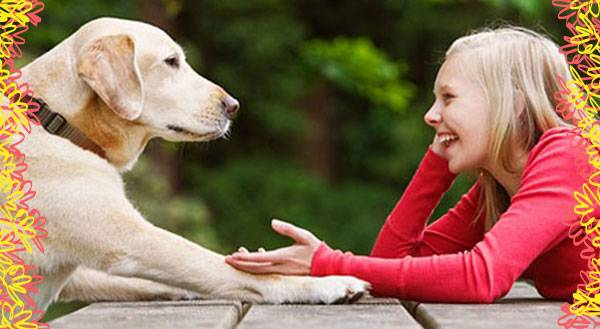 Every Dog Owner Does These 7 Things (Especially #4!)