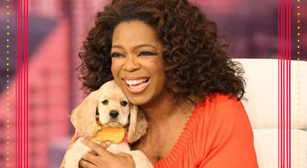 9 Pets Who Are Richer Than You Will Ever Be