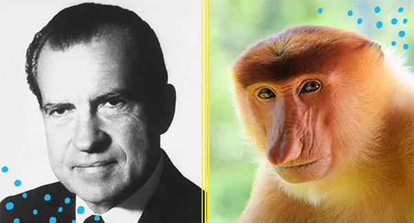 13 Animals That Look Remarkably Like Presidents