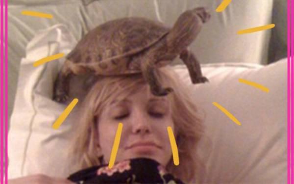 10 of Tinseltown's Weirdest Celebrity Pets