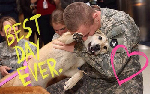 Weep of the Week: Dogs Reuniting With Their Soldier-Owners