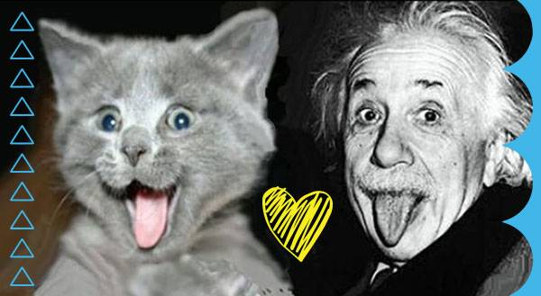 9 Famous People Who Freak 4 Their Cats