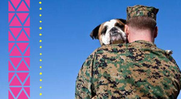 Military Animals That Deserve Purple Heart Medals (and a Few Who Really Don't)